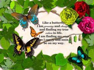 wpid-butterfly_metamorphosis_by_yamtharf-d322z5d.jpg